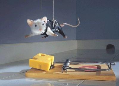 حکایت آموزنده تله موش